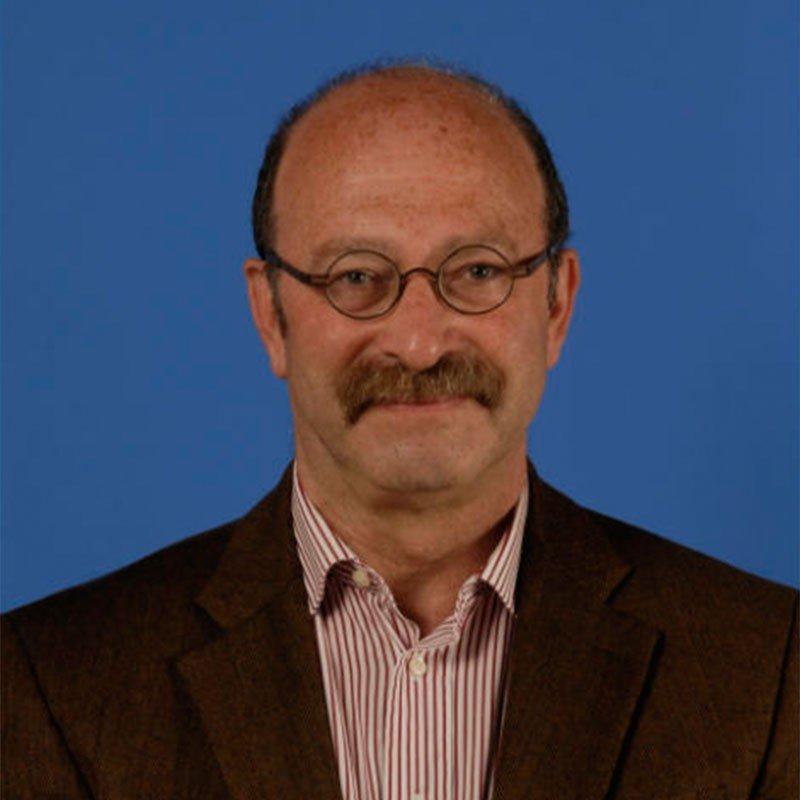 Профессор Пьер Зингер