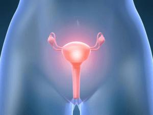 акушерство и гинекология в Израиле