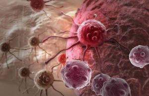 cancer cellx